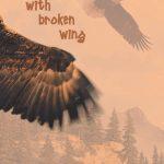 Bird with Broken Wing